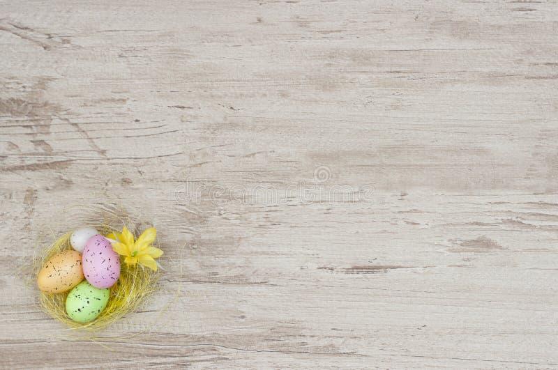 Покрашенные яичка в гнезде с цыпленком на древесине стоковое фото