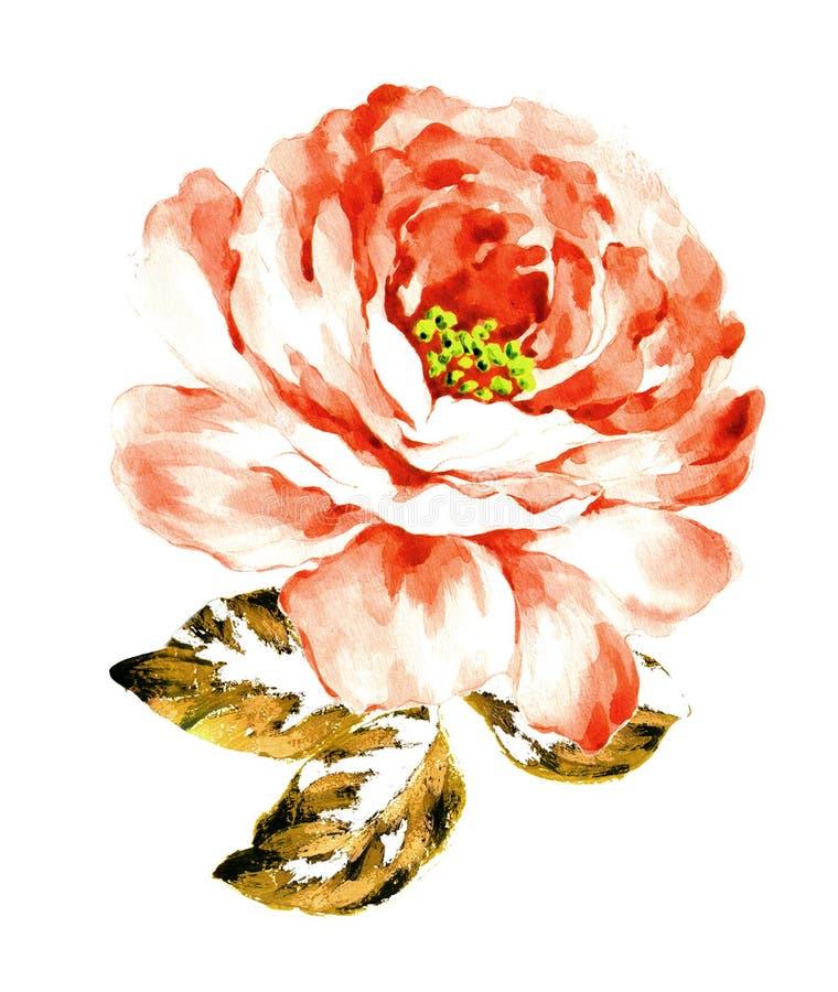 Покрашенный вручную материал цветка акварели, красивая выбитая картина, европейский затенять текстуры картины стоковые фото