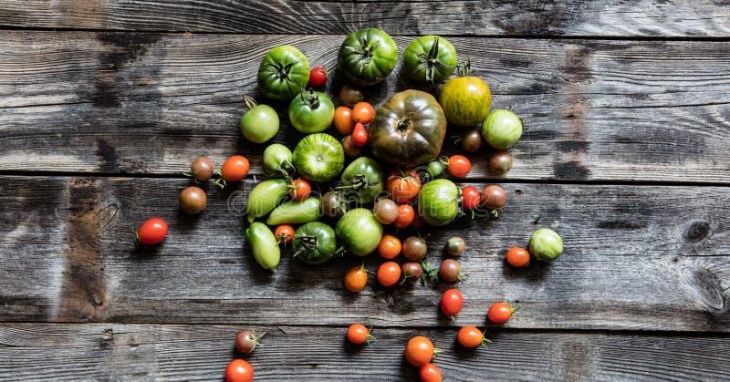 Покрашенный зеленые и красные томаты для органической здоровой вегетарианской диеты стоковая фотография rf