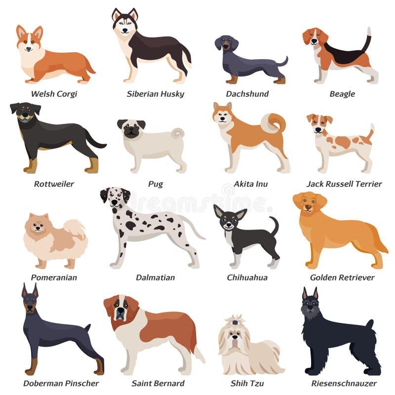 Покрашенный комплект значка собак Purebred иллюстрация вектора