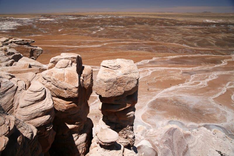 Покрашенный национальный парк пустыни, Аризона США стоковое фото rf