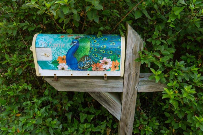 Покрашенный почтовый ящик с павлином стоковое изображение rf