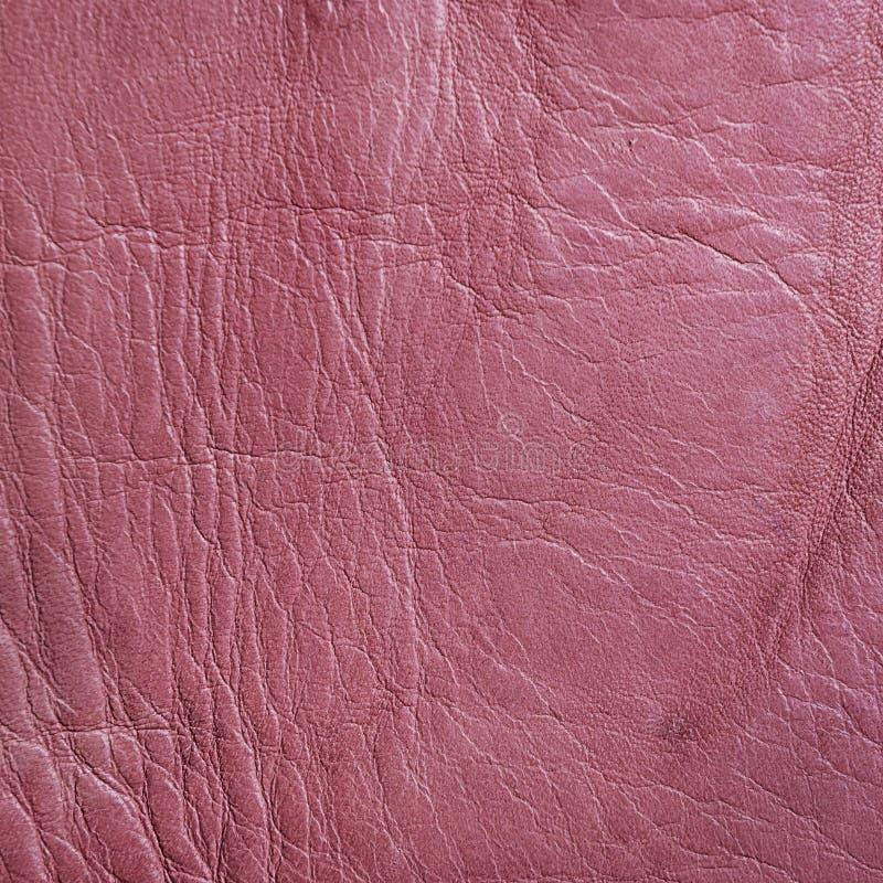 покройте кожей розовую текстуру стоковое изображение rf