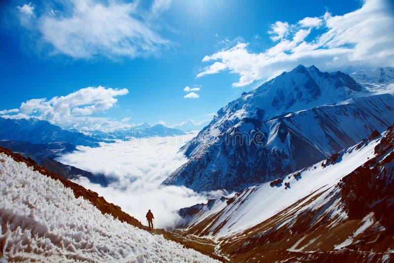 покрынный снежок гор стоковые изображения