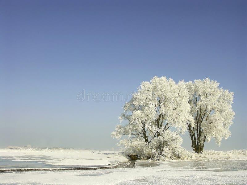 покрытая зима валов ландшафта заморозка стоковые фото