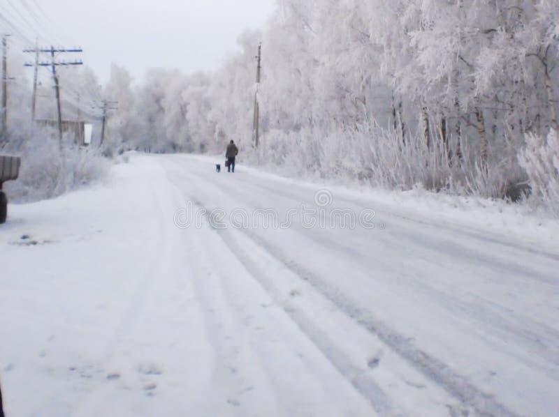 покрытая Снег дорога зимы, березы в изморози, ландшафте зимы, мягком фокусе стоковая фотография rf