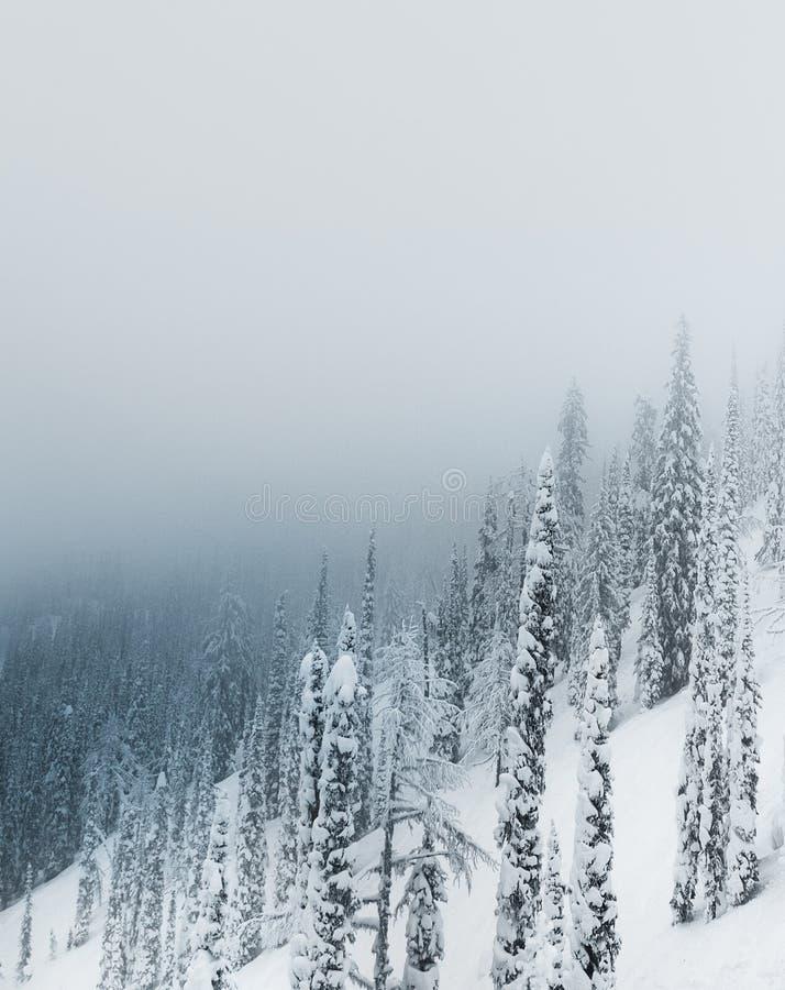 покрытые валы снежка гор горы дома hoarfrost стоковые изображения rf