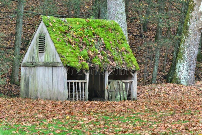 Покрытые мхом листья крыши и падения покрыли поле на ферме стоковое изображение