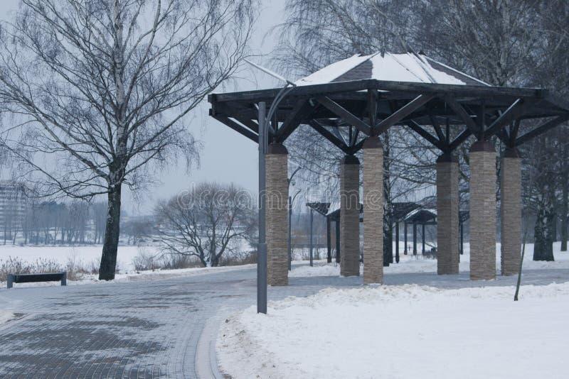 покрытые Снег деревья и стенды в городе паркуют стоковые фотографии rf