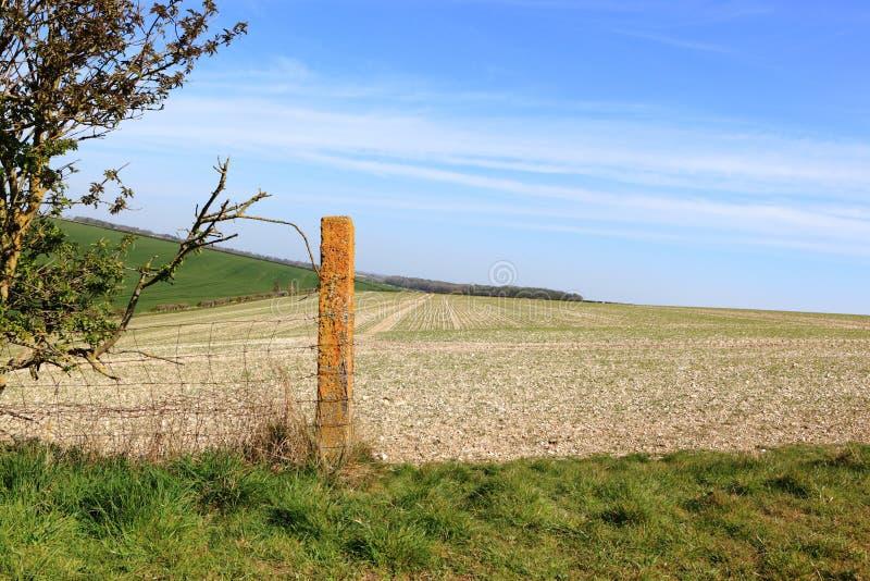 Покрытый лишайником столб загородки в ландшафте заплатки в весеннем времени стоковое фото