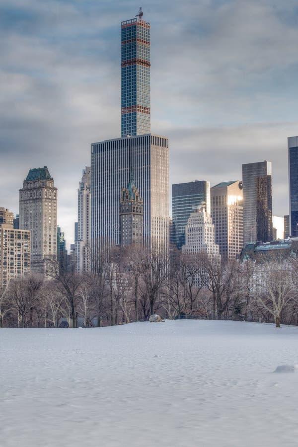 покрытый Снег луг овец - Central Park стоковое изображение rf