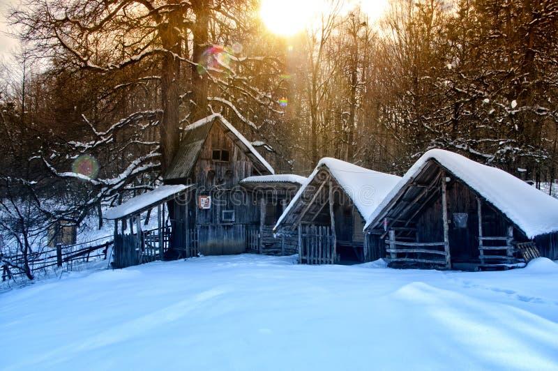 покрытый снежок дома стоковая фотография