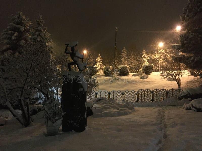 покрытый снежок парка стоковое фото