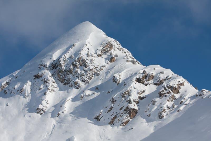 покрытый снежок пика горы стоковое изображение