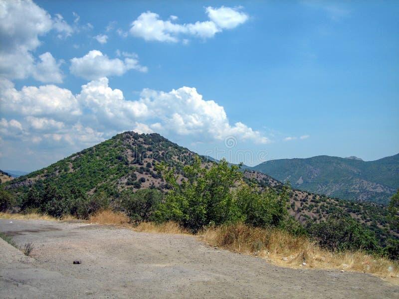 Покрытый с зелеными холмами кустов на солнечный горячий день стоковые фотографии rf