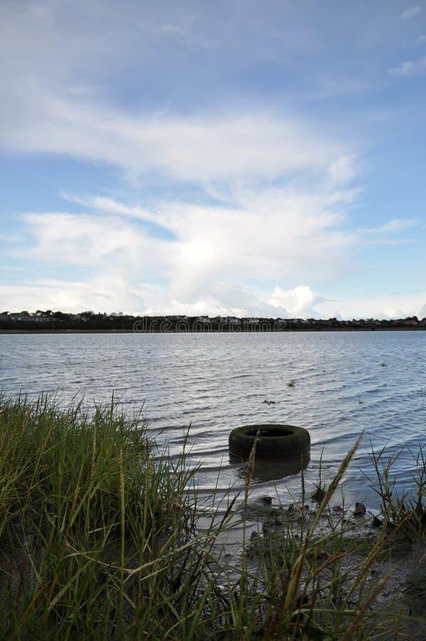 Покрышка/автошина в реке, озере, море стоковое изображение rf