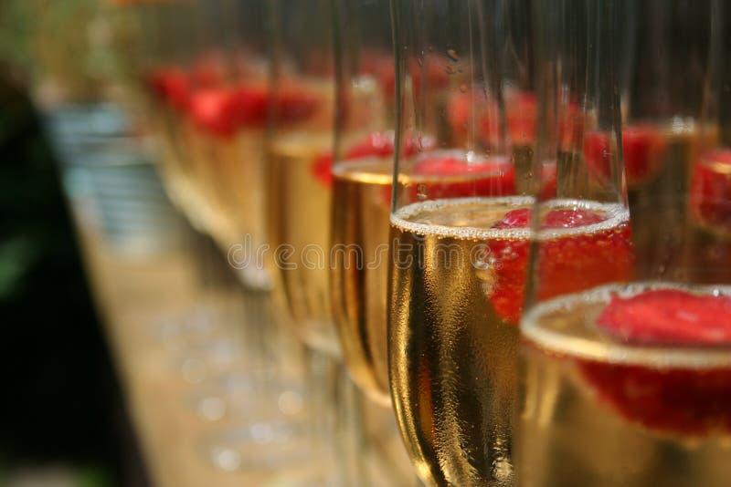 поленики шампанского стоковые фото