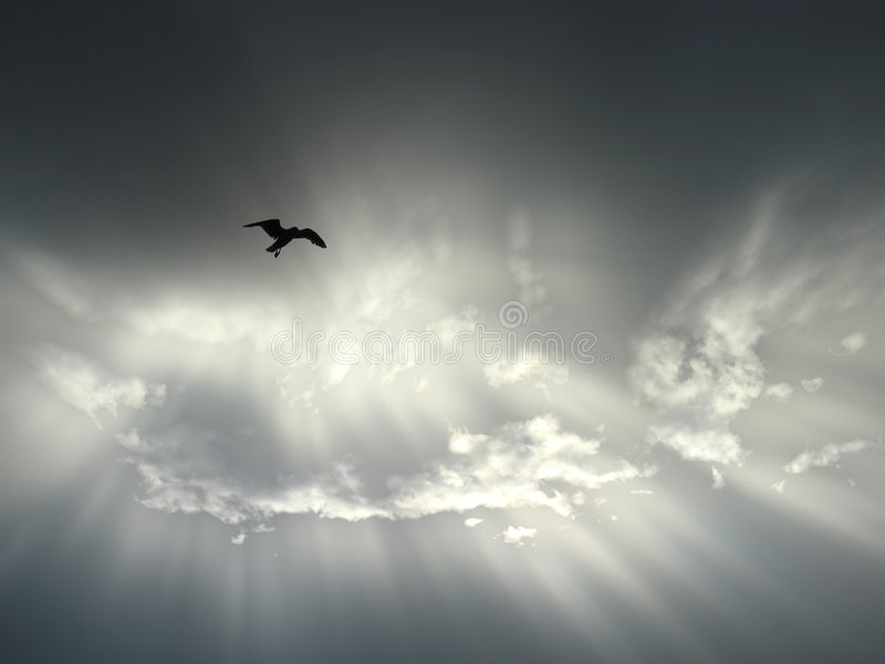полет бесплатная иллюстрация