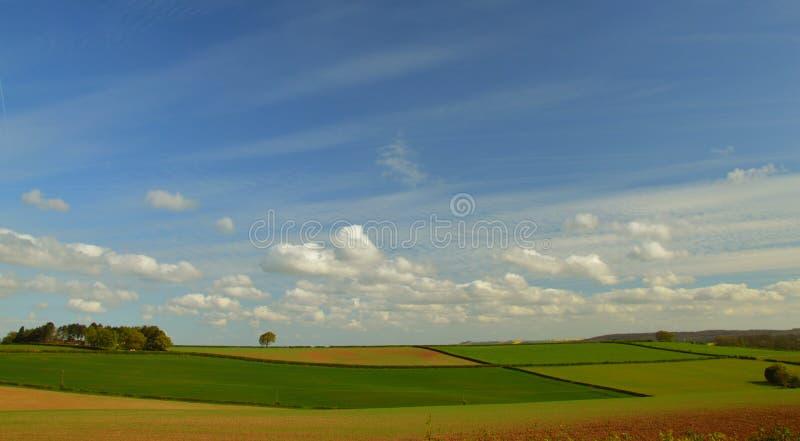 Поле весной стоковое изображение