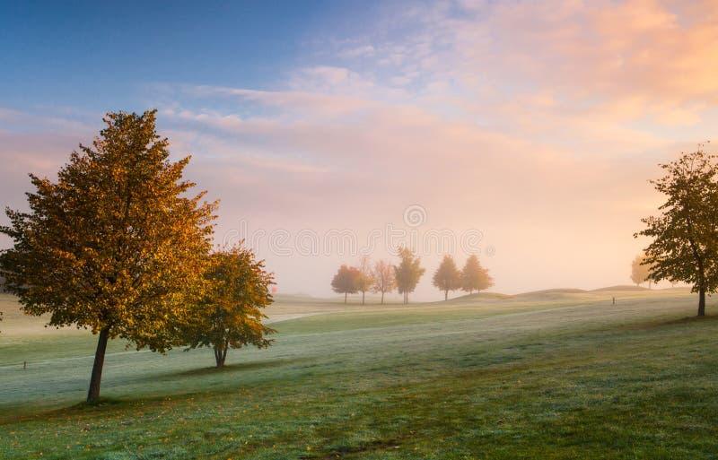 Поле для гольфа на восходе солнца стоковые фотографии rf
