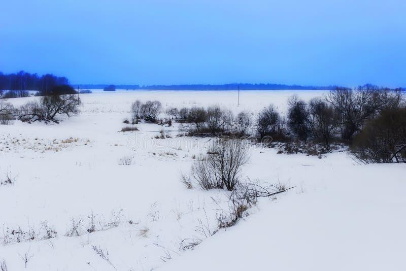 Поле зимы, русская широта стоковая фотография rf