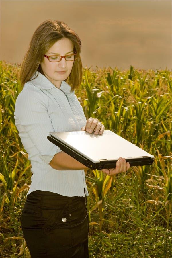 поле инженера земледелия стоковая фотография