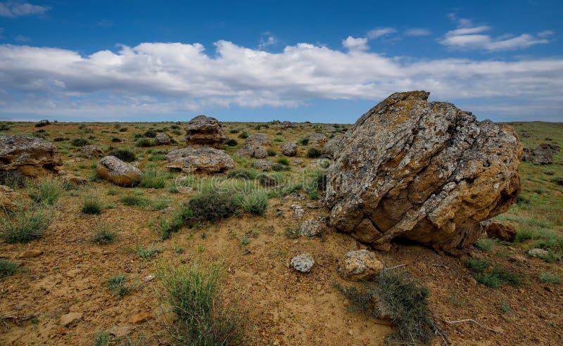 Поле каменных шариков стоковое фото