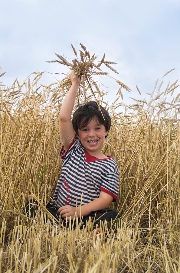поле мальчика стоковое изображение