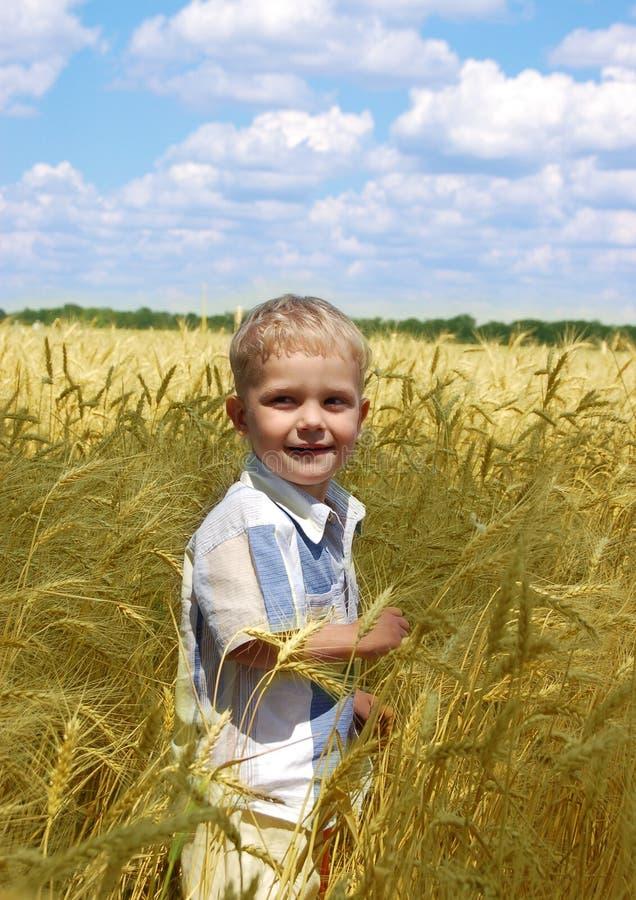 поле мальчика стоковое изображение rf