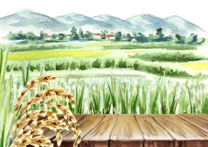 Поле риса и пустая предпосылка таблицы Акварель il нарисованный рукой бесплатная иллюстрация