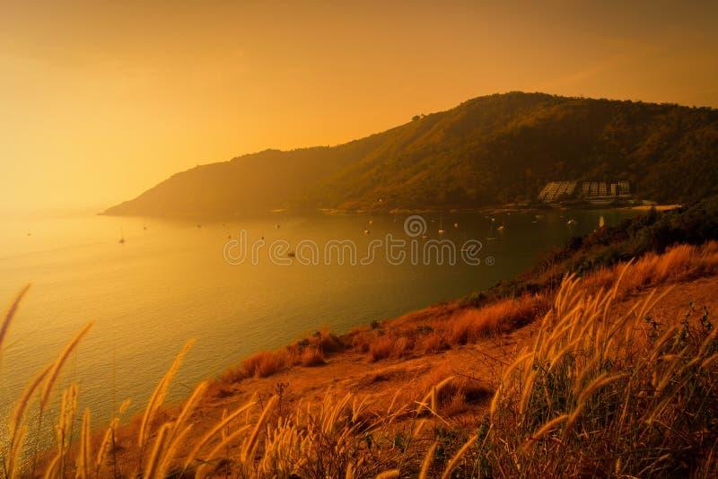 Поле травы с предпосылкой моря точки зрения на заходе солнца Селективный f стоковое фото