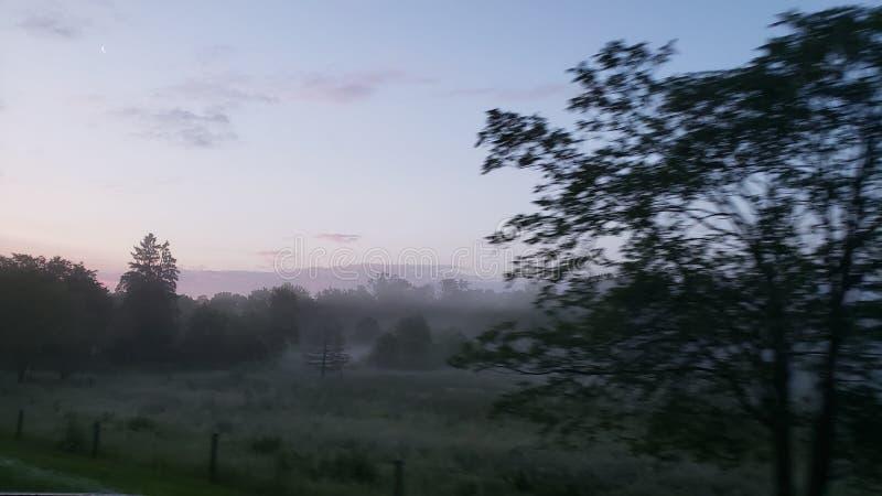 Поле тумана стоковые изображения rf