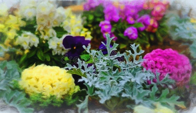 Поле цветков в цветени стоковая фотография rf