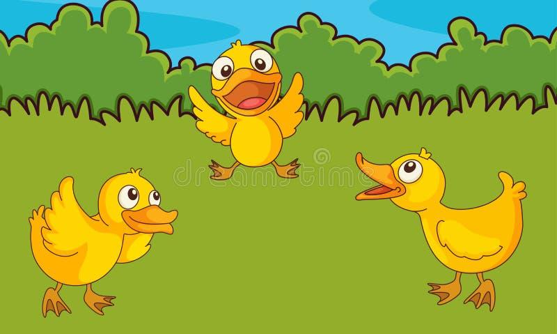 поле цыпленоков иллюстрация вектора