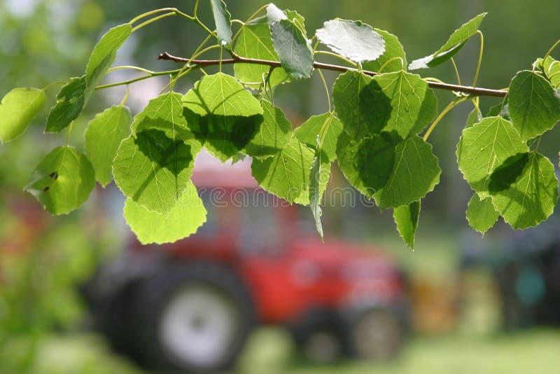 Download поле стоковое фото. изображение насчитывающей поле, трактор - 491800