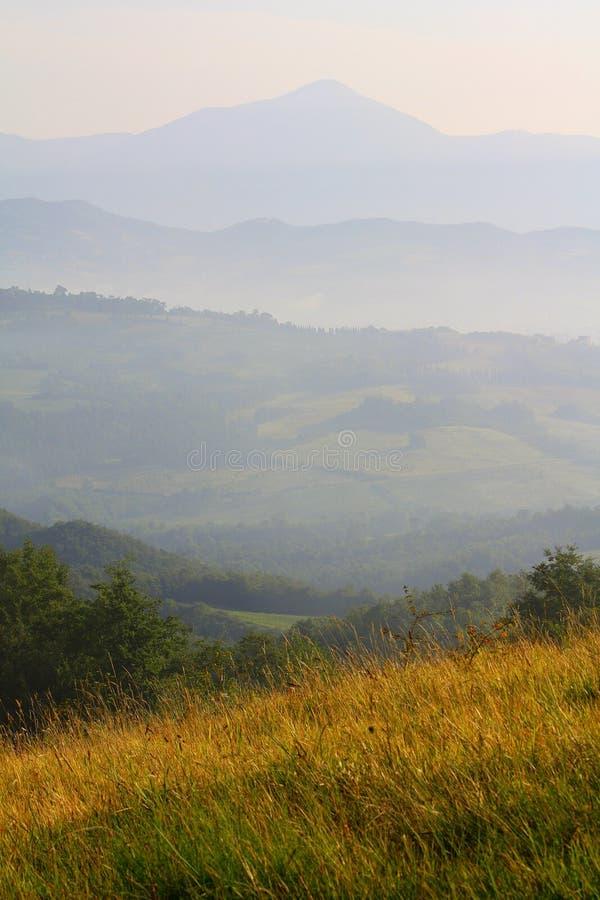 поле umbria стоковые изображения rf
