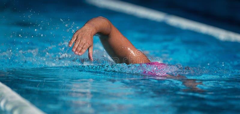 Ползание заплыва спортсмена пловца стоковое изображение rf