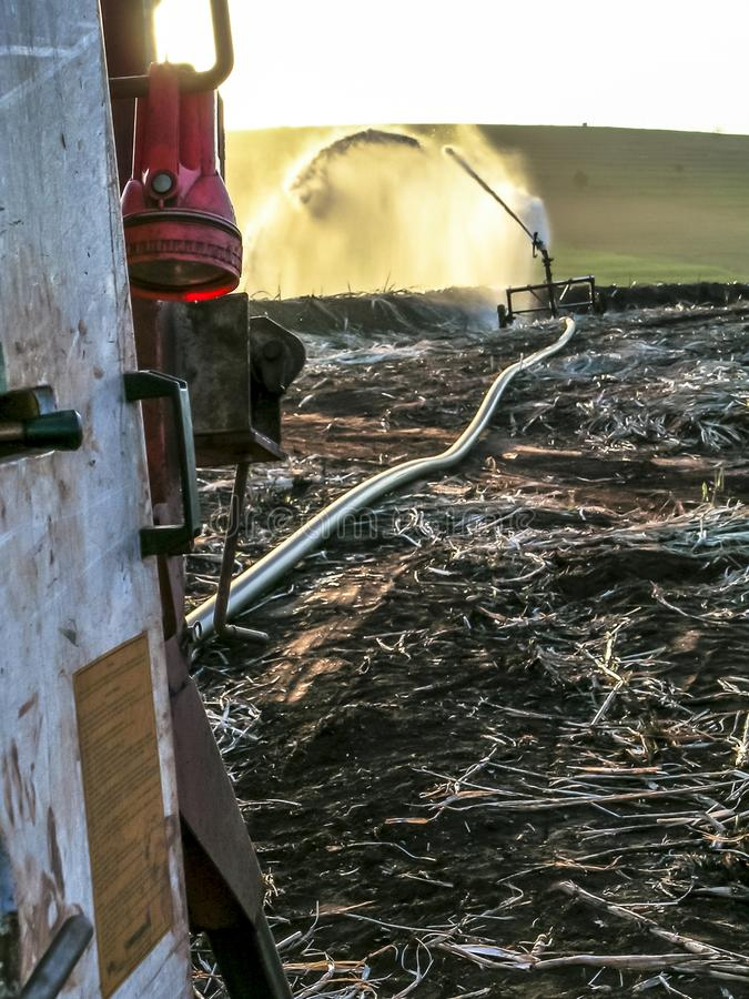 Полив и землеудобрение в поле сахарного тростника стоковая фотография