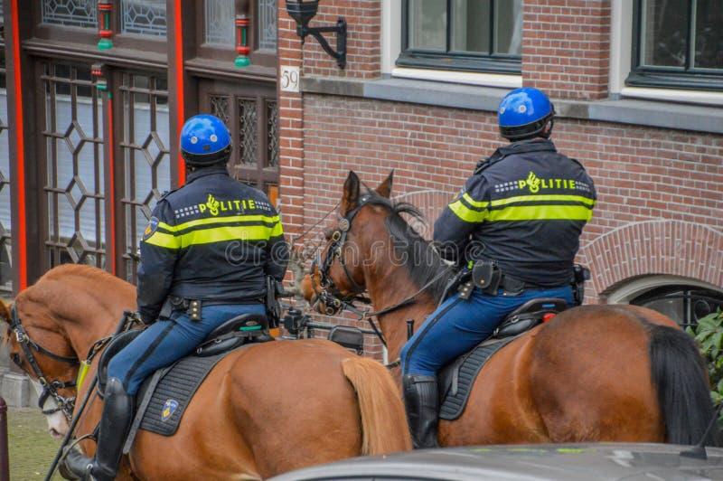 Полицейскии Амстердама на лошадях стоковое фото rf