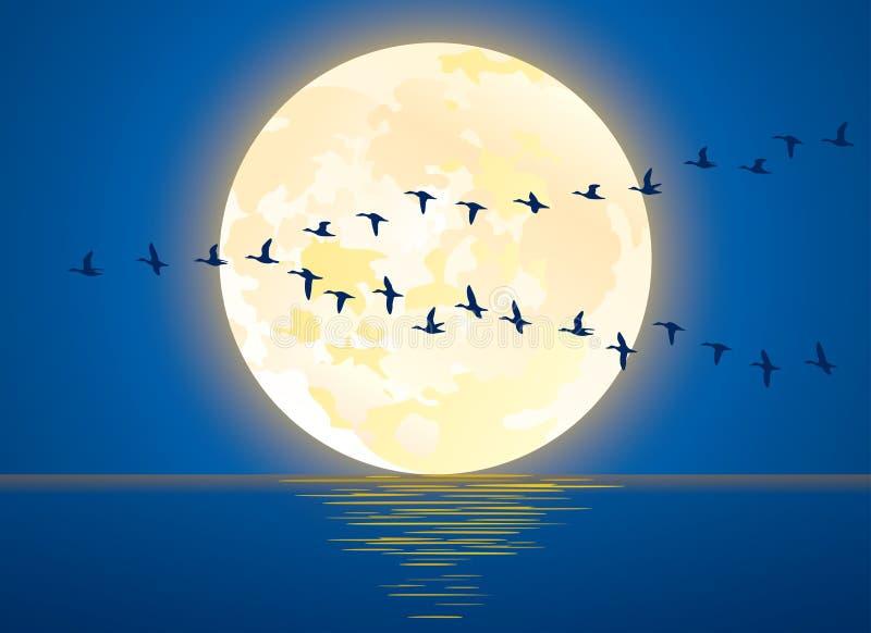 Полная луна, поднимающаяся над океаном, пустая на ночной векторной иллюстрации бесплатная иллюстрация