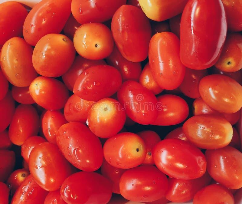 Полная рамка свежих томатов стоковые изображения rf