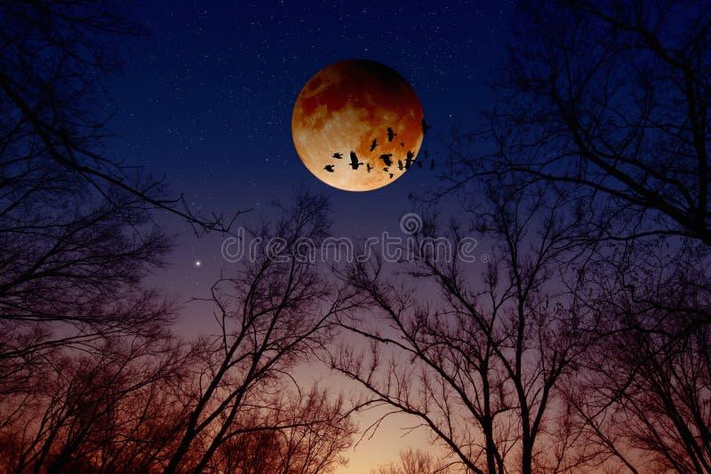 Полное лунное затмение, затмение луны стоковое изображение rf