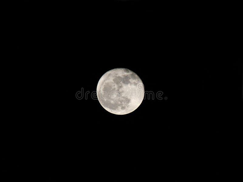 Полнолуние на ноче стоковая фотография