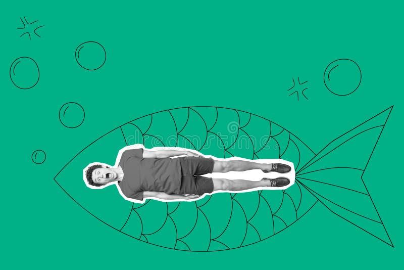 Полноразмерное тело длины он он его красивая отрезка вставка изображения вне в покрашенный живот больших больших рыб выкрикивать  стоковая фотография rf