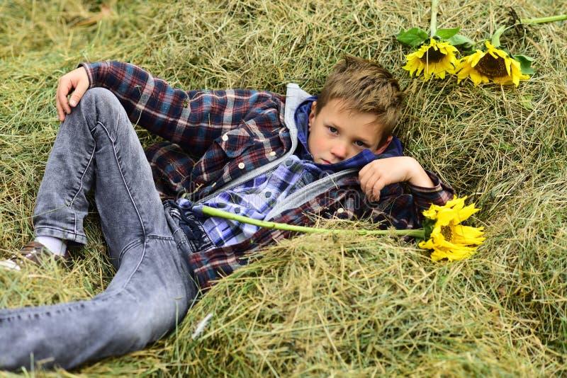 Полностью беспечальный Малый мальчик ослабляет в сеновале Малый мальчик в амбаре фермы Сеновал в сельской местности Как раз ослаб стоковые изображения