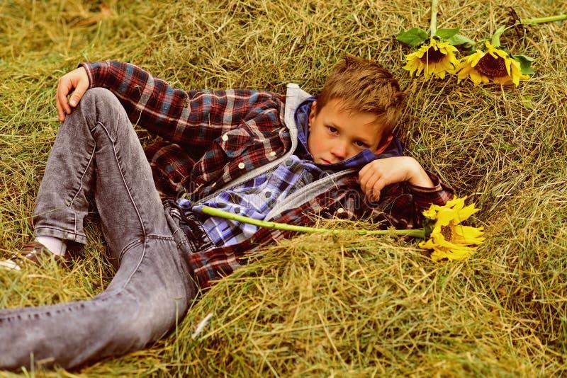 Полностью беспечальный Малый мальчик ослабляет в сеновале Малый мальчик в амбаре фермы Сеновал в сельской местности Как раз ослаб стоковая фотография rf