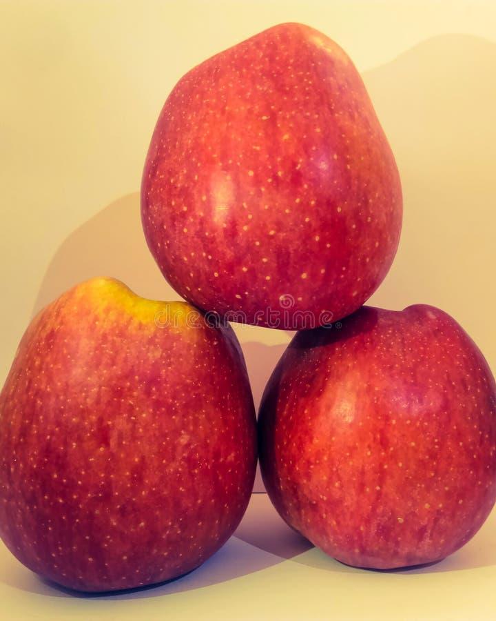 Полностью созретое яблоко стоковые изображения