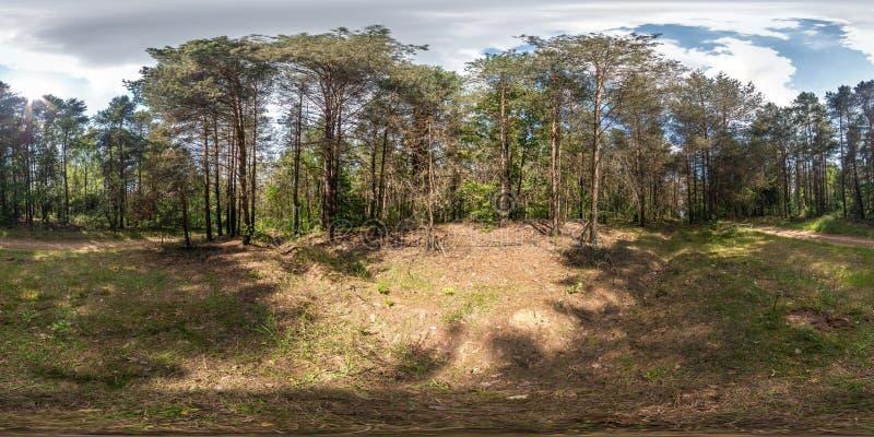Полностью сферически панорама hdri 360 градусов взгляда угла на пути майны тропы и велосипеда гравия пешеходном в лесе pinery в с стоковая фотография rf
