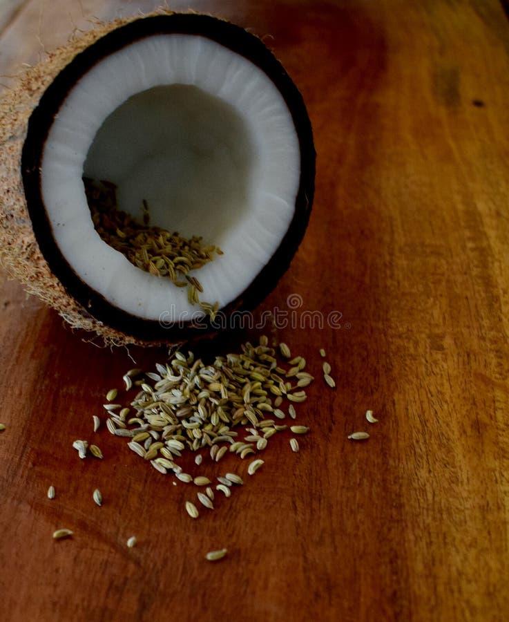 Половинная раковина кокоса с зернами фенхеля на древесине в квадрате E стоковое фото rf