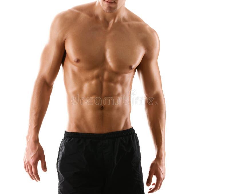 Половинное нагое сексуальное тело мышечного человека стоковая фотография